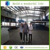 De prefab Structuren van het Huis van de Waren van de Workshop van de Bouw van het Staal van het Pakhuis van het Metaal