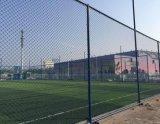 حارّ عمليّة بيع ملعب مدرّج [شين لينك] يسيّج