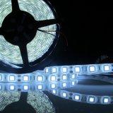 Striscia flessibile dell'indicatore luminoso di DC12V DC24V 17.2W/M SMD5050 LED