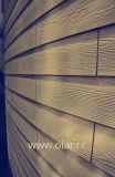ファイバーのセメントのボード(下見張り) --セリウムの公認の木製の穀物のパネル