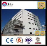 Prefab светлая мастерская стальной структуры (BYSS1005)