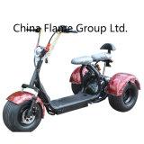 1000W 60V/30ahの電気土のバイク