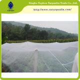 Сеть белого нового HDPE 100% Insect-Proof