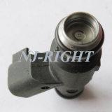 Essence d'injecteur d'injecteur d'essence de Delphes Nozzel 25359853 pour F-3 FRV de BYD