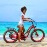 26inch 500Wの雪の電気バイクの電気自転車Ebike