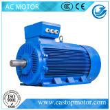 Y3 de Motor van de Fase voor Elektrische centrales met aluminium-Staaf Rotor