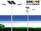 réverbère solaire de la CE approuvée de 24W LED avec 6m Polonais