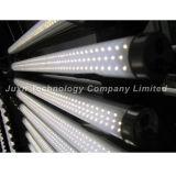 Lampada 19W (1500mm, copertura del tubo del LED di PVC)