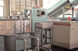 Plastikstrangpresßling, der Maschine für pp., PET, LDPE, HDPE, BOPP aufbereitet