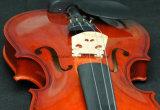 1 / 8-4 / 4 Plywood Student Best Selling Violin (N-V01)
