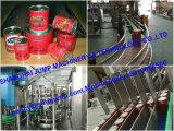 Linha de produção do molho do tomate do pacote do malote do carrinho