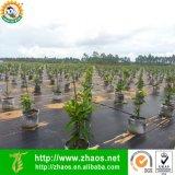 Prodotto intessuto polipropilene di paesaggio di controllo di Weed di uso di agricoltura