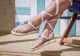 Sandálias 2016 lisas da fantasia da fábrica de China das senhoras do projeto da forma (RW28028)