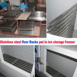 Im Freieneis-Verkaufsberater der Haltefähigkeit des Eis-750kgs