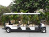行楽地のための11人の乗客の電気観光のカート