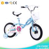 2015 12 「新しいMoedelの赤ん坊はバイクをからかう