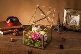 Fiore fresco di Ivenran per il contenitore di regalo