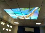 Frameless 디자인 사진 색칠에 의하여 주문을 받아서 만들어지는 40W LED 위원회 빛