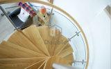 Fornitori della scala/scala a spirale di vetro usata con le impronte di legno solido