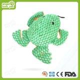 Hierba mascota zanahoria, los juguetes del gato
