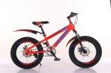 子供のバランスのバイク、子供のバランスのバイク、子供のLCバイク029のための歩行者のバイク