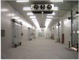 肉および魚の低温貯蔵部屋
