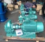 Pompe de pétrole de vitesse de Huanggong pour le transfert d'essence avec le moteur d'Ex-Épreuve