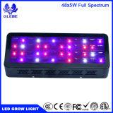 Glebe 240W LED는 실내 플랜트 Veg와 꽃을%s 가벼운 가득 차있는 스펙트럼을 증가한다