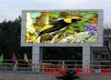 Im Freienörtlich festgelegte installieren farbenreiche Bildschirmanzeige-Baugruppe LED-P10