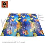 Couvre-tapis campant, couvre-tapis se pliant, couvre-tapis de jeu de bébé