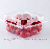 طعام عالميّ ثمرة صندوق محبوب مستهلكة شفّافة بلاستيكيّة يعبّئ كرز صندوق