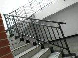 Barandilla decorativa de encargo revestida de la escalera del polvo de Akzo Nobel