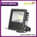 riflettori esterni delle lampade dell'inondazione di 30W LED migliori