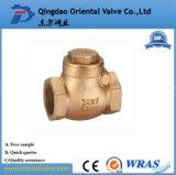 Задерживающий клапан весны высокого качества цены по прейскуранту завода-изготовителя Dn80 латунный с латунным сердечником