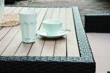 Сад Polywood напольное Калифорния патио ротанга Wicker обедая установленная мебель (J382)