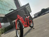 모터 전기 E 자전거를 가진 뚱뚱한 타이어 전기 자전거