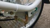 리튬 건전지 연장자, Tektro V 브레이크 E 자전거를 위한 적은 화물 세발자전거