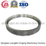 Forged Large Gear for Machinery