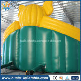 성인과 아이 의 거대한 물 미끄럼, 팽창식 물 미끄럼 부속을%s 팽창식 물 미끄럼