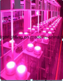 Hot Selling fill Spectrum75W UFO LED Grow Lights 25*3W LED Grow plans Lamp for indoor Flower Plants Grow