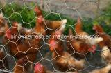 Het Opleveren van het gevogelte met Laag Koolstofstaal