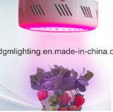 5 des Garantie-vollen Jahre Spektrum-75W Mini-LED wachsen Pflanzenlampe für Gemüsegewächshaus