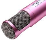 Giocatore tenuto in mano di karaoke del microfono del peso leggero KTV Bluetooth di nuovo arrivo