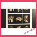 Сухая пленка рентгеновского снимка Meical пленки ультразвука