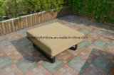 Belt Woven & Aluminum Furniture, Outdoor Garden Sofa (TG-6004)