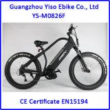 1000W 불안정한 드라이브 모터 뚱뚱한 E 자전거