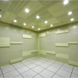 عمليّة بيع حارّ سماعيّة ألومنيوم سقف لأنّ داخليّة زخرفيّة
