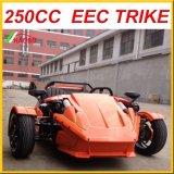 3 колеса 250cc Ztr для взрослого