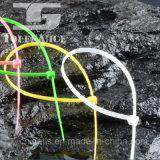 Banden van de Kabel van het Product van de fabriek de Zelfsluitende Nylon