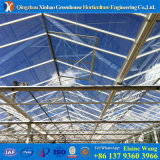 PC Sheet Greenhouse Polycarbonate Greenhouse for Agricutural Growing